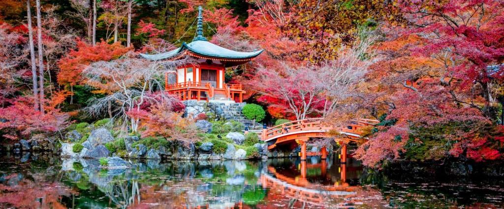 Lola rêve d'aller à Kyoto et nous aussi !
