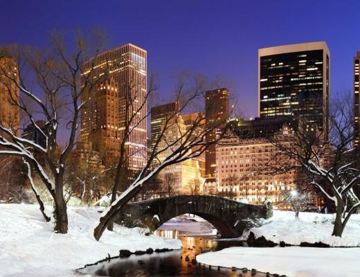 new-york-central-park-winter